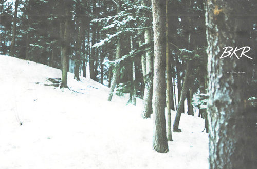 Winters Prelude